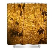 Ivy Shadows Shower Curtain