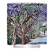 Jacaranda Road Shower Curtain
