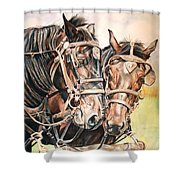 Jack And Joe Hard Workin Horses Shower Curtain