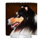 Black Jack- Collie Shower Curtain