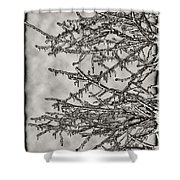 Jack Frost Shower Curtain