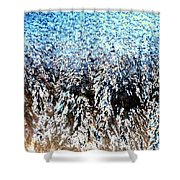 Jack Frost Forest Shower Curtain