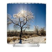 Jack Frost's Last Stand Shower Curtain