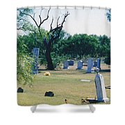 Jack Rabbit In Cementery Shower Curtain