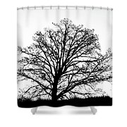 Jackson By Pete Ramirez Shower Curtain