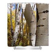 Jackson Hole Wyoming Shower Curtain