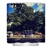 Jackson Square Carriages Shower Curtain