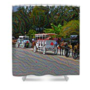 Jackson Square Horse And Buggies Shower Curtain