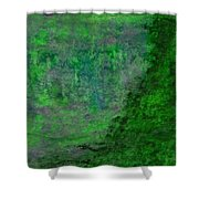 Jade Abstract Shower Curtain