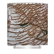 Jades Night Out - Tile Shower Curtain