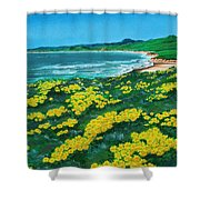 Jalama Beach Shower Curtain