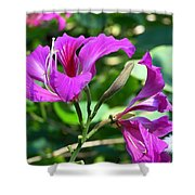 Jamaican Bloom Photograph   Shower Curtain