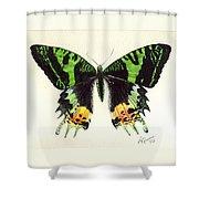 Jamaican Jewel Shower Curtain