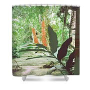 Jamaican River Shower Curtain