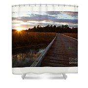 Jamestown Forest Loop Sunset Shower Curtain