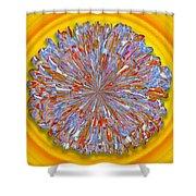 Janet -- Floral Disk Shower Curtain