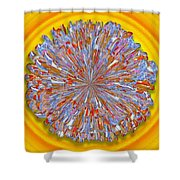 Janet -- Floral Disk Shower Curtain