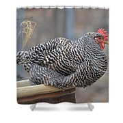 Janet The Happy Hen Shower Curtain