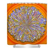 Jannell -- Floral Disk Shower Curtain