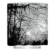January Beauty 2 Black And White  Shower Curtain