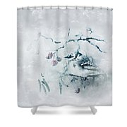 January Bluejay  Shower Curtain