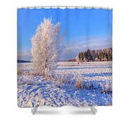 January Day Shower Curtain