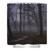 January Fog 2 Shower Curtain