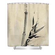 Japan: Bamboo, C1830-1850 Shower Curtain