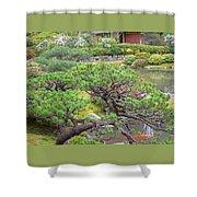 Japanese Elm Shower Curtain