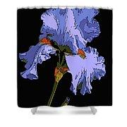 Japanese Iris-blue Beauty Shower Curtain