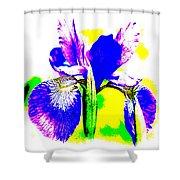 Japanese Iris Pop Art Abstract Shower Curtain