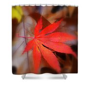 Japanese Maple Leaf Shower Curtain