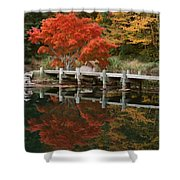Japanese Reflection Shower Curtain
