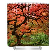 Japenese Garden, Portland Shower Curtain
