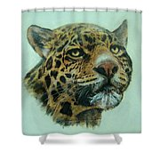Jaquar  Shower Curtain