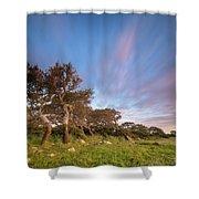 Jara's Wind Shower Curtain