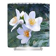 Jasmin Flower Shower Curtain