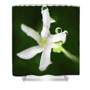 Jasmine Balance Shower Curtain