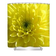 Yellow Luminosity  Shower Curtain