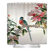 Jay On A Flowering Branch Shower Curtain by Chinese School