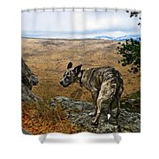 Jazz On The Rocks Shower Curtain