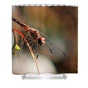 Jelks Dragon Shower Curtain
