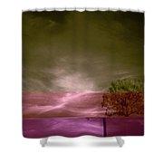 Jelks Pine 2 Shower Curtain