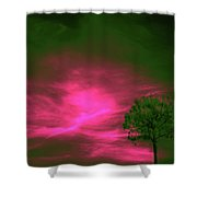 Jelks Pine 3 Shower Curtain
