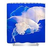 Jellies In Jellyfish Tank In Monterey Aquarium-california Shower Curtain