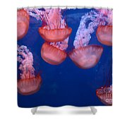 Jellies Shower Curtain