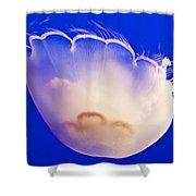 Jelly In Jellyfish Tank In Monterey Aquarium-california Shower Curtain