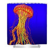 Jelly1 Shower Curtain
