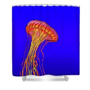 Jelly2 Shower Curtain