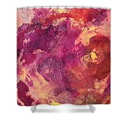 Jellyfish 2 Shower Curtain